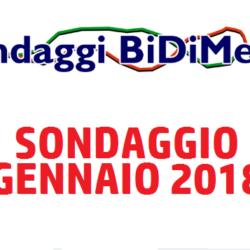 Elezioni Politiche: Sondaggio Bidimedia - Gennaio 2018 - Partecipate al nostro sondaggio!