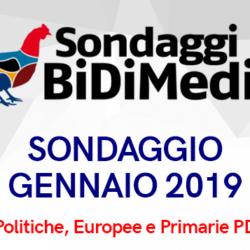 Elezioni Politiche, Europee e Primarie PD - Gennaio 2019 - Partecipate al nostro sondaggio: chi votereste se si votasse domani?